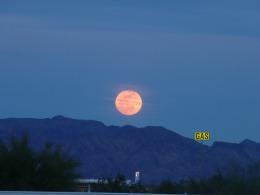 full-moon-176751_1280